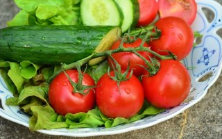 Сода для выращивания огурцов и томатов: рецепты растворов для подкормки и опрыскивания